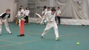 junior crickets