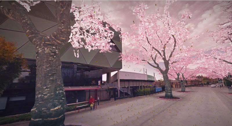 headingley cherry blossom