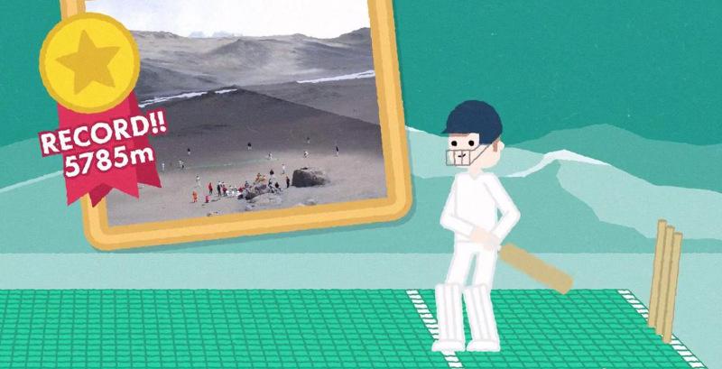 flicx cricket pitch video