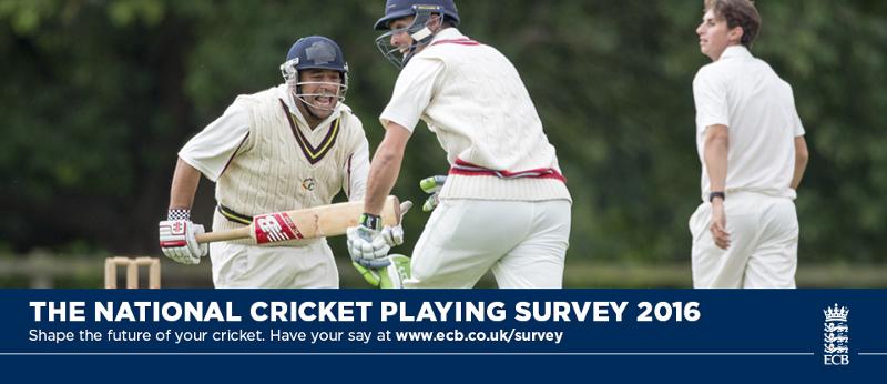 english cricket survey