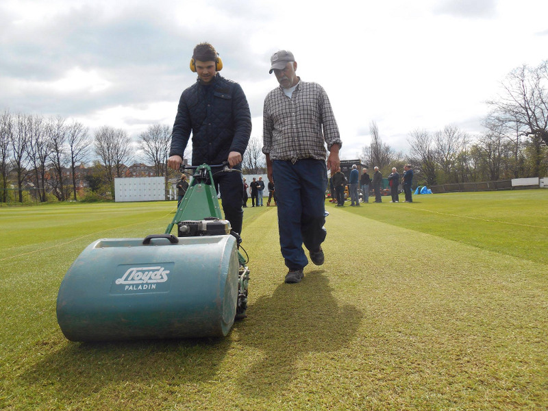 cricket groundsman david hodgson