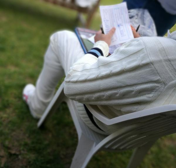 checking cricket teams