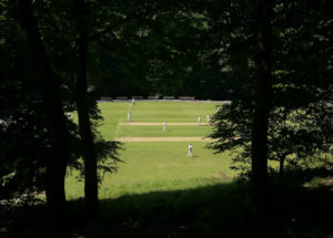 triangle cricket club