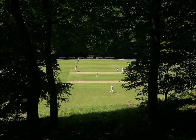 triangle cricket club