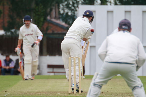 Woodlands batting