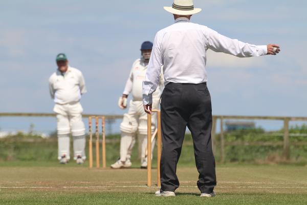 cricket yorkshire survey