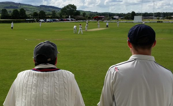 club cricketers watch a game with their backs to the camera