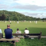cricket at the Nidderdale Show