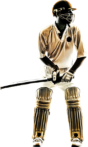 zwingo cricketer