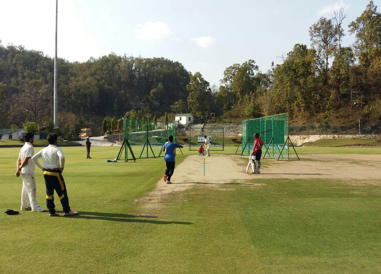 cricket asylum cricket tour