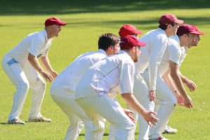 nidderdale cricket league: knaresborough forest vs alne
