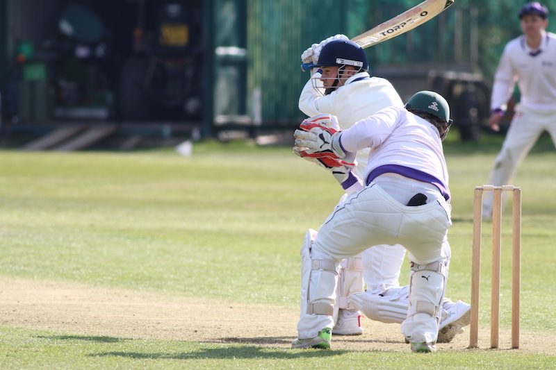 club cricket - batsman