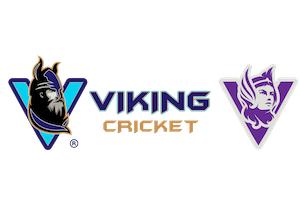 Viking-Cricket