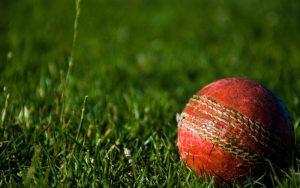 cricket ball - club cricket
