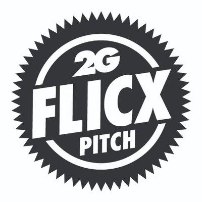 flicx cricket pitch